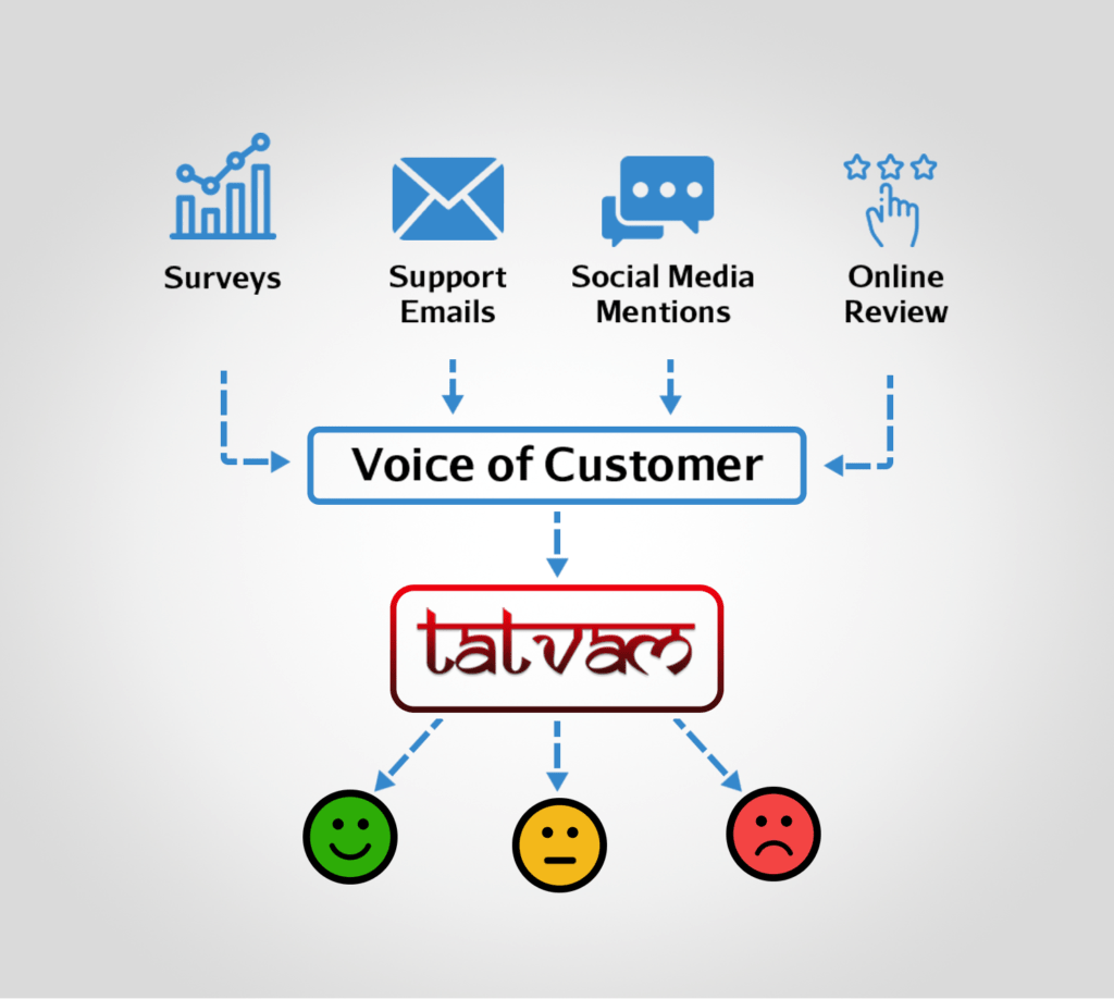 Image for Voice of Customer